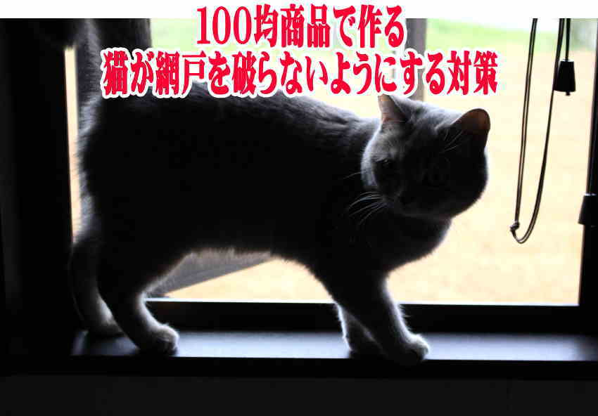 """猫 網戸""""破る 対策 100均"""