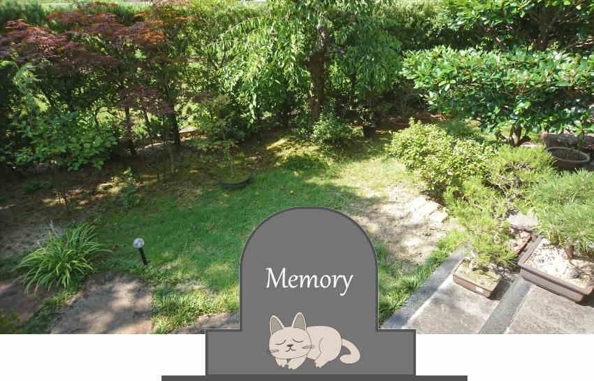猫が死んだら庭に埋める